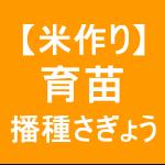 【稲作6】育苗/播種/準備、育苗箱に土入れます(*゚ー゚*)