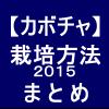 【カボチャ12】栽培方法2015 まとめ
