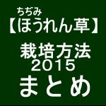 【寒締めほうれん草16】 栽培方法2015 まとめ
