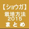【ショウガ29】栽培方法2015 まとめ