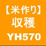【稲作26】収穫/稲刈り→ヤンマー YH570( ゚Д゚ )