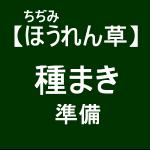 【寒締めほうれん草4】播種準備(´゚ω゚`)