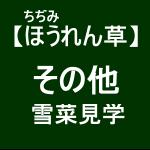 【寒締めほうれん草7】雪菜の調整作業を見学した(゚∀゚)