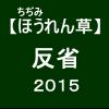 【寒締めほうれん草15】 出荷・栽培の反省2015