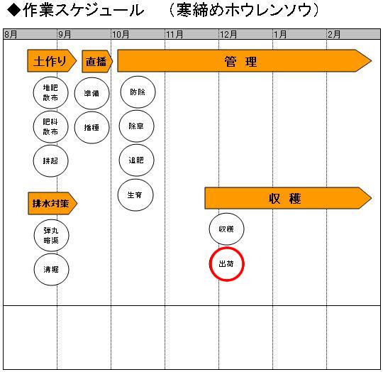 03収穫_出荷