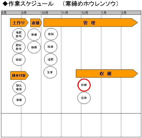 03収穫_収穫