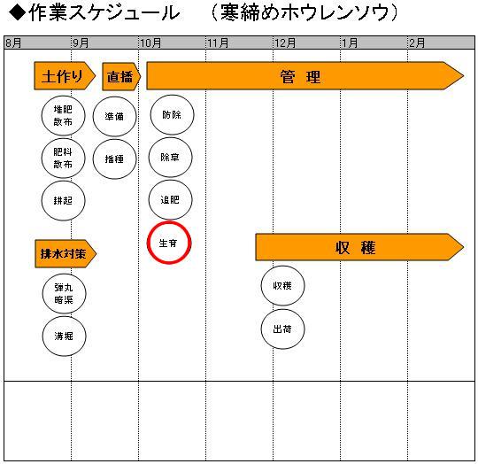 03管理_生育