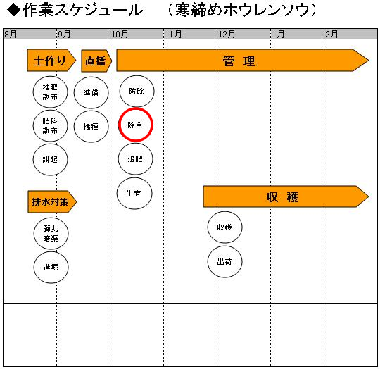 03管理_除草