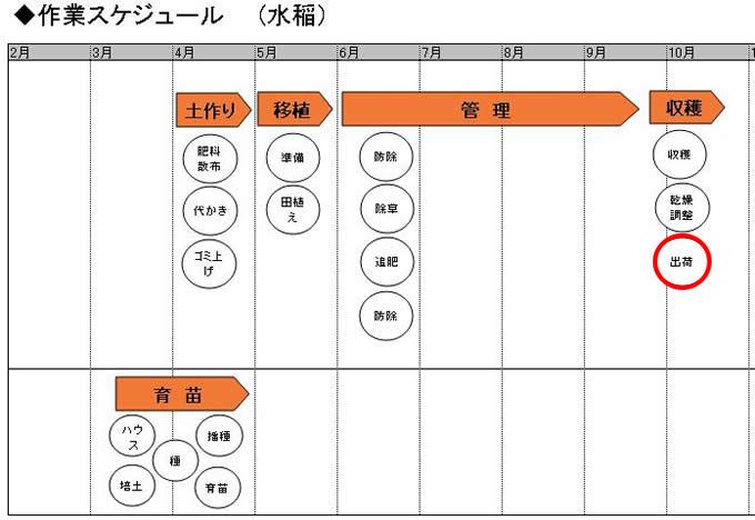 05.収穫_出荷