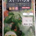 【実験】 冬の種まき! ハーブ系(赤シソ、バジル)は発芽するのか!?