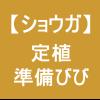 【ショウガ13】 定植/準備→アッパーで細かく土をくだく!