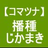 【小松菜4】 直播その2/失敗・・/雨後のがちがちの圃場。。