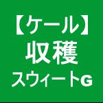 【ケール46】 収穫/スウィートグリーン☆( ゚∀゚)ノ