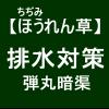 【寒締めほうれん草2】排水対策(´・_・`)