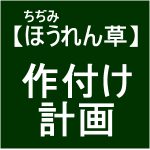 【寒締めほうれん草1】作付計画∑(´д`*)