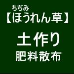 【寒締めほうれん草3】肥料散布(゚´ω`゚)